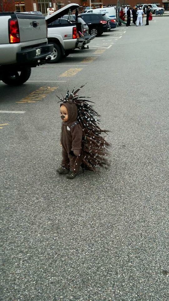 halloween baby porcupine outfit